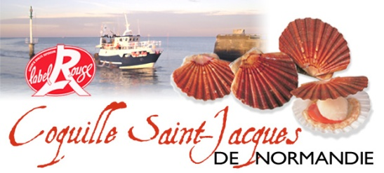 coquille_saintjacques_normandie_label_rouge