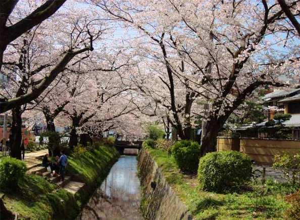 france-japon-visiter-visiter-chemin-philosophe-kyoto-2-1