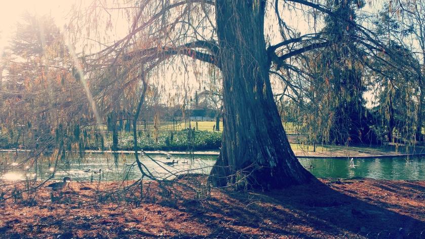 parc bordelais_nicecommeilvousplaira