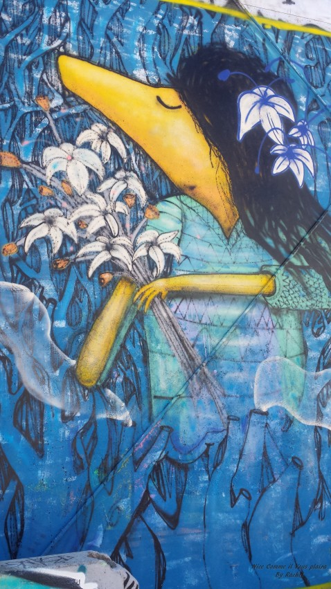 street art darwin_nicecommeilvousplaira1