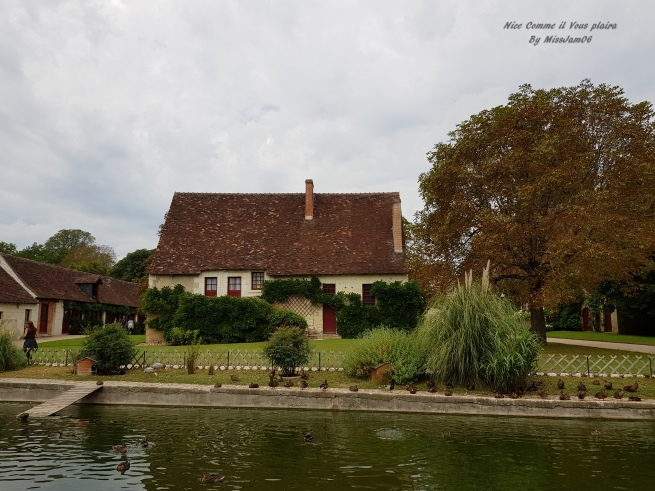 chenonceau_ferme_nicecommeilvousplaira
